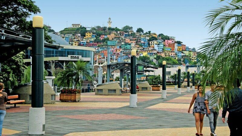 Blick auf den Cerro Santa Ana in Guayaquil © Diamir