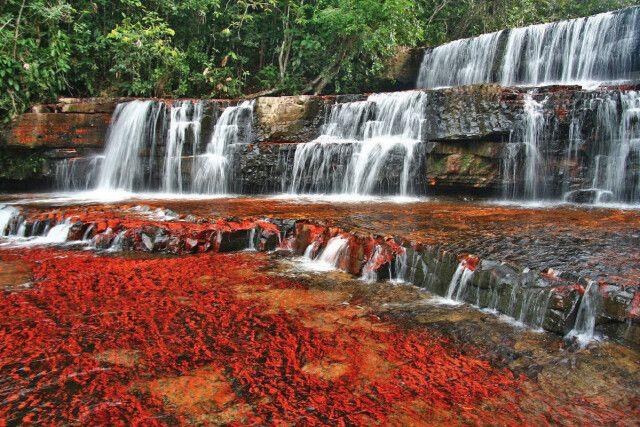 Der Jaspis-Wasserfall in der Gran Sabana, Venezuela: das Flussbett aus dem Halbedelstein Jaspis gibt dem Fluss die Farbe