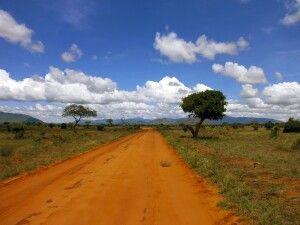Weite Landschaft im Tsavo East Nationalpark
