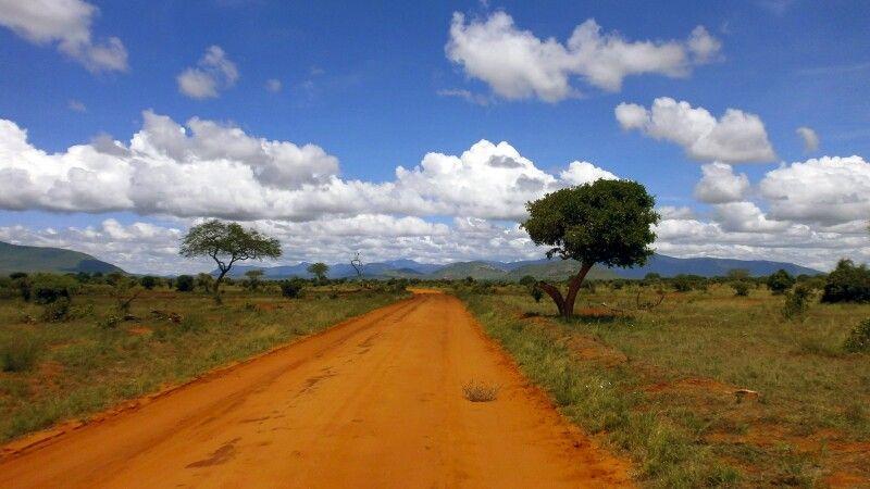 Weite Landschaft im Tsavo East Nationalpark © Diamir