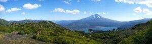 Araukarienwald vor dem Vulkan Llaima im Conguillio-Nationalpark