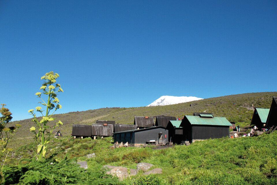 Horombo Hütte Kilimanjaro