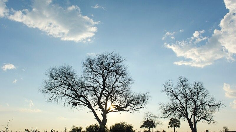 Sonnenuntergang © Diamir