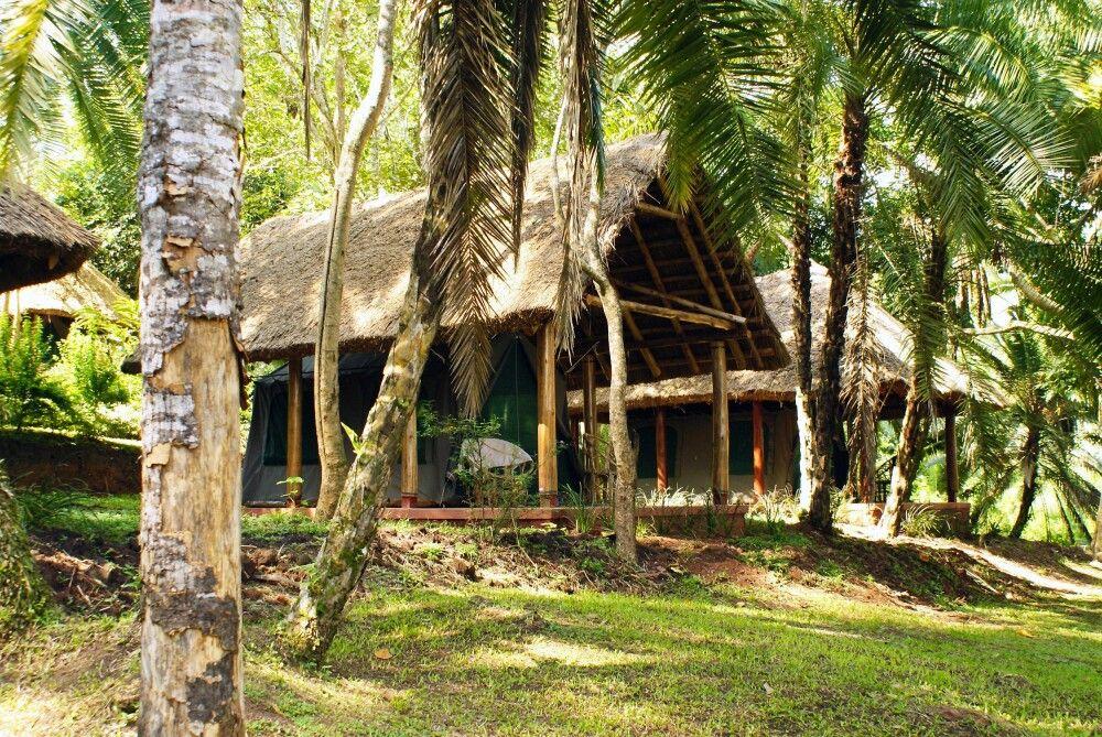 Hauszelt des Kibale Forest Camps