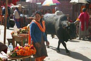 Bazarstraßen in Kathmandu