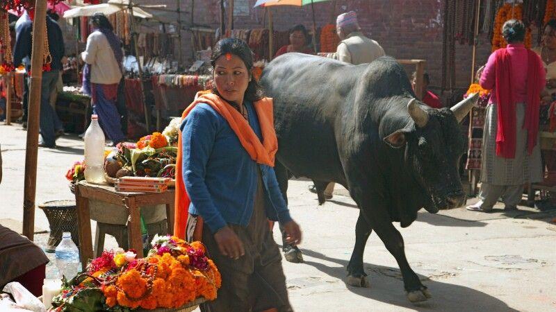 Bazarstraßen in Kathmandu © Diamir