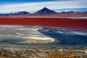 Rotgefärbte Laguna Colorada