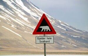 Vorsicht Eisbär Schild