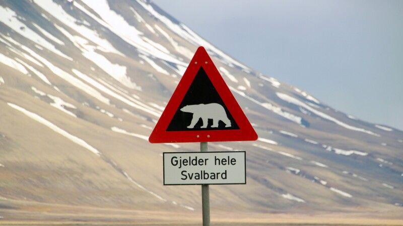 Vorsicht Eisbär Schild © Diamir