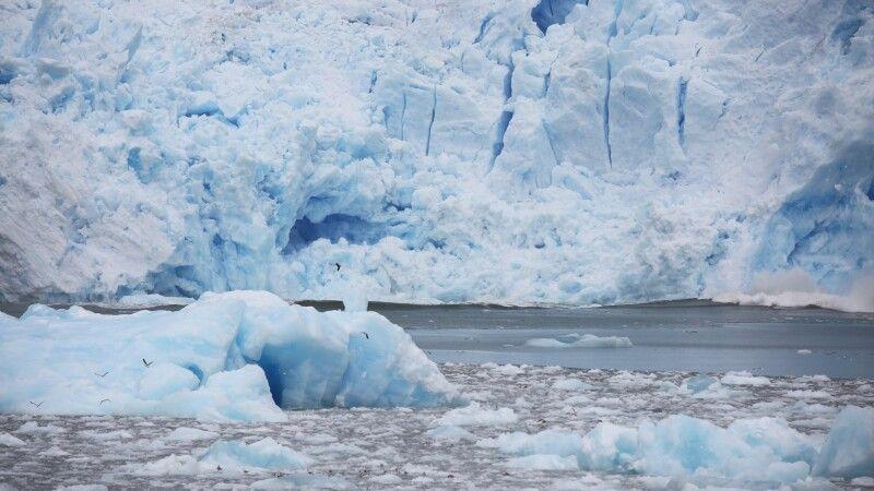 Kalbungsstückchen und Gletscherfront des San Rafael-Gletschers © Diamir