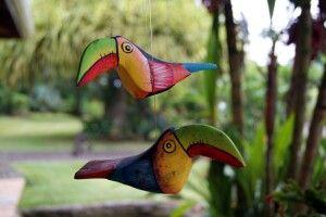 Sinnbild Costa Ricas: die Tukane