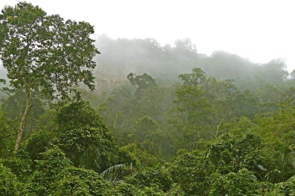 kurzer Regenschauer im Ba-Be-Nationalpark