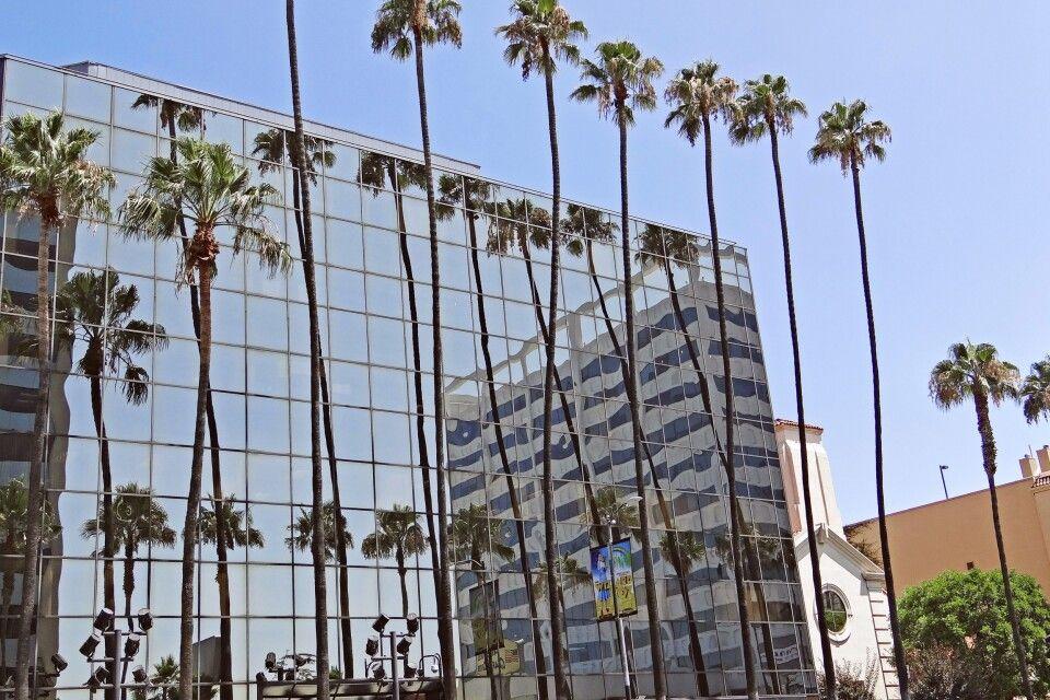 Palmengesäumte Alleen gibt es überall in L.A.