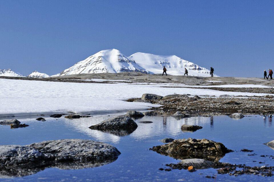 Im Kongsfjord – im Juni noch geprägt durch Schnee