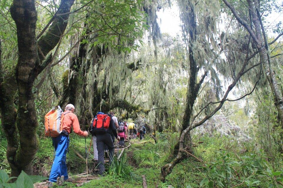 Aufstieg zur Saddle Hut, Mt. Meru