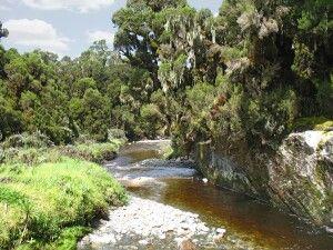 Mobuku Fluss Ruwenzori