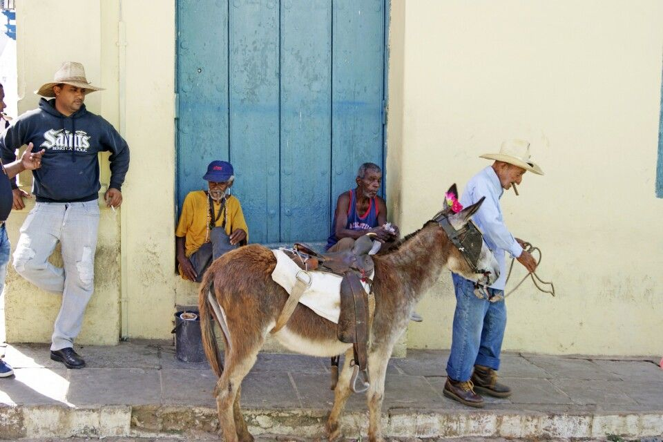 Typisch kubanisches Straßenbild: ein hübsch geschmückter Esel und sein Halter