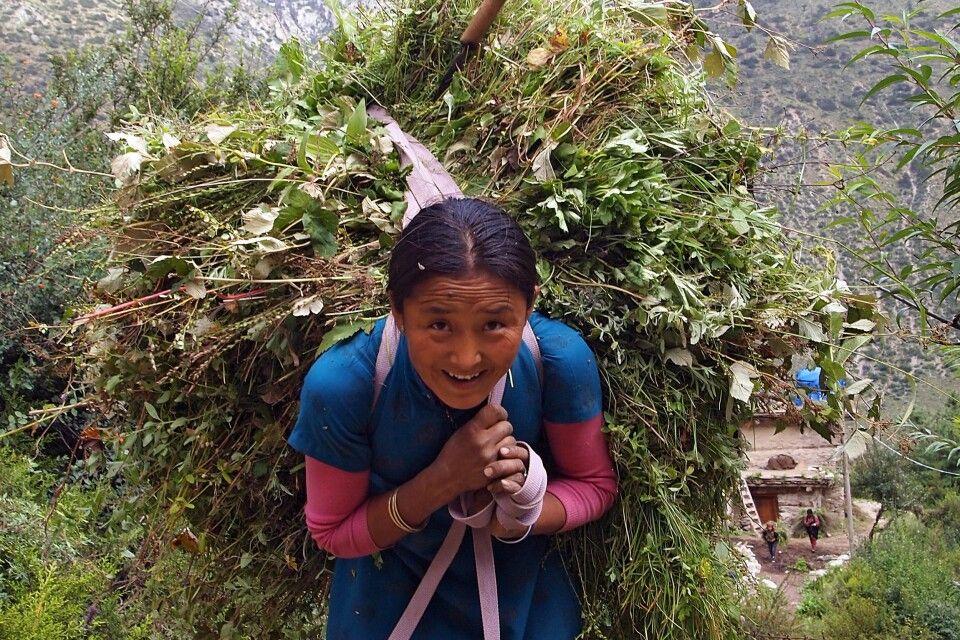 Junge Sherpani im Helambu