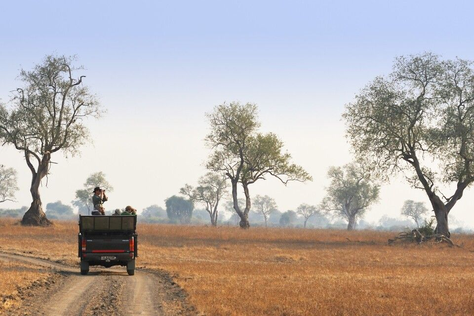 Safari durch den South Luangwa NP