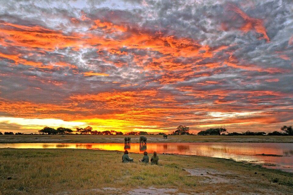 Sonnenuntergang und Elefanten