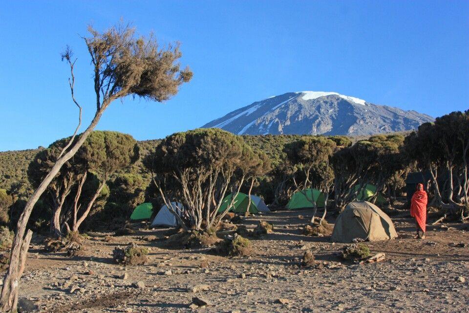 Der Abstieg erfolgt über das Millenium Camp (3790 m).