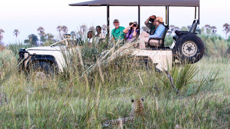 Safari im Okavango-Delta © Diamir