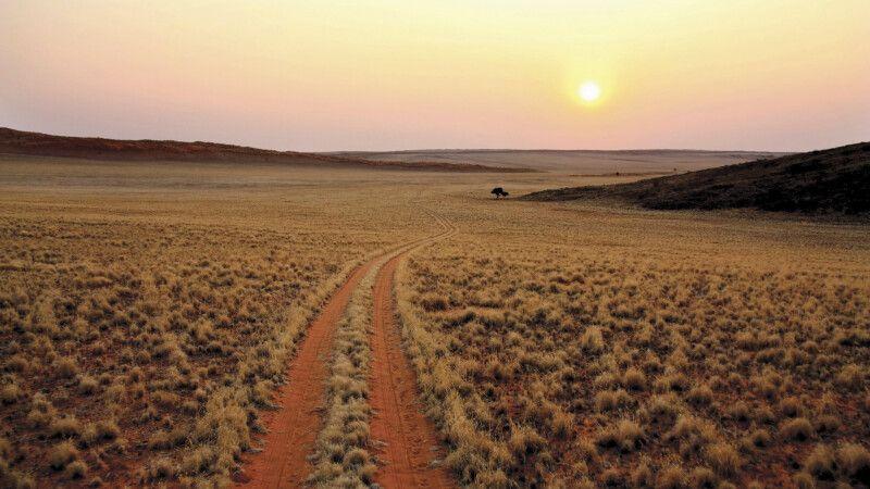 sich in der Weite Namibias verlieren © Diamir