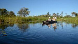 Unterwegs im Mokoro, dem für das Okavangodelta typischen Einbaum