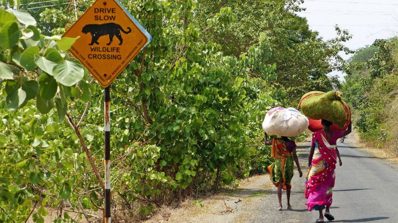 Zentralindien Frauen bei der Arbeit © Diamir