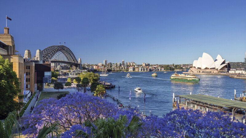 Frühling in Sydney © Diamir