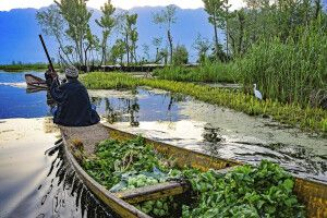 Gemüsehändler auf dem Dal-See