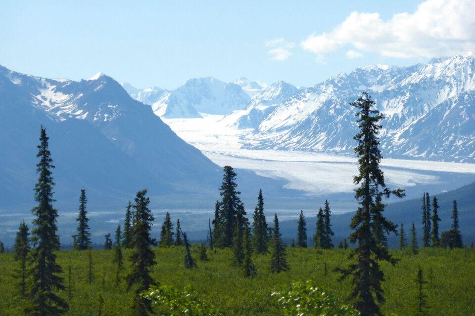 Nelchena-Gletscher am Glenn Highway