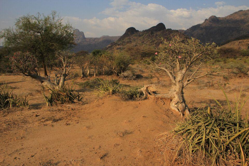 Schöne Landschaft bei den Boya