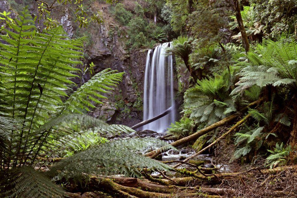 Wasserfall im Hinterland der Great Ocean Road