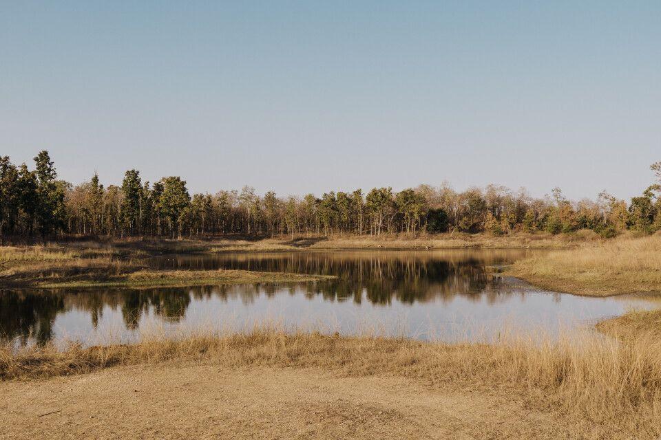 Pench, Tadoba-Nationalpark