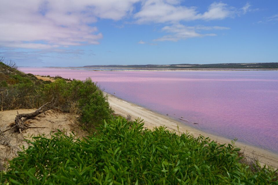 Der Pink Lake – Naturspektakel und auf Bakterien in der Salzkruste zurückzuführen.