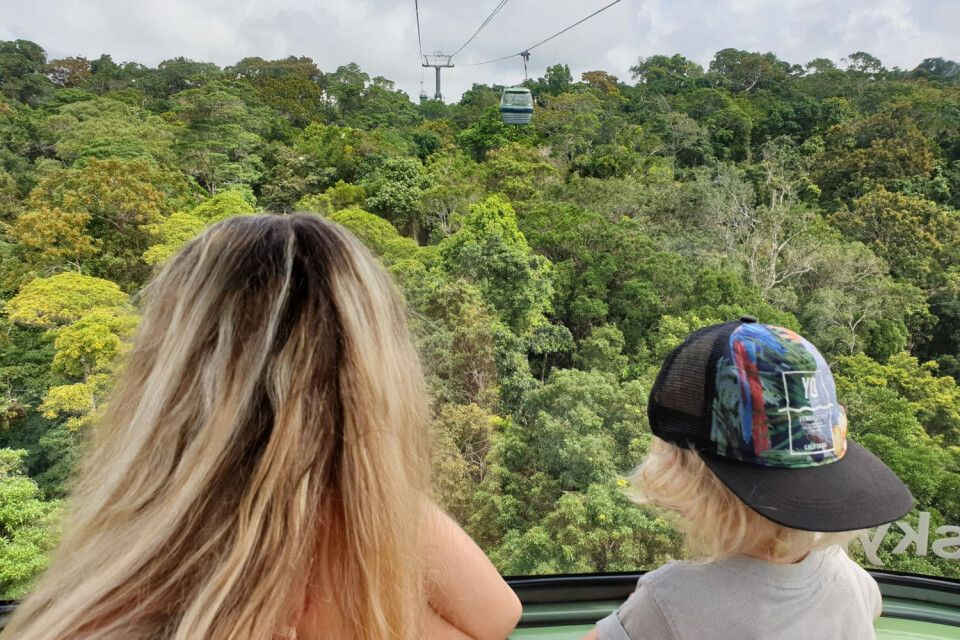 Skyrail, die Gondelbahn durch den Dschungel, gerade für Kinder besonders erlebnisreich