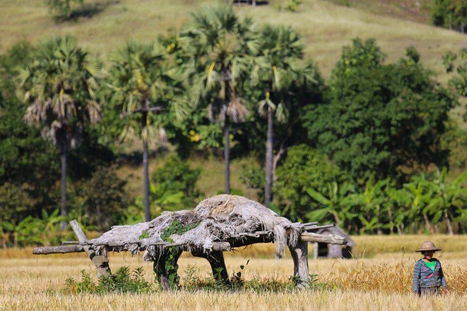 Überlandfahrt von Bagan in den Chin State