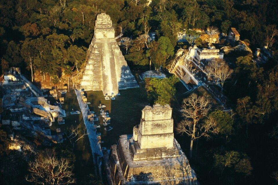 Maya-Tempel Tikal in Guatemala
